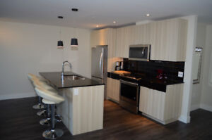 LIVING IN LUXURY - 2 BR/2B -  PET FRIENDLY  - RENTAL INCENTIVE