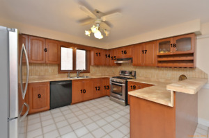 KITCHEN FOR SALE! READY FOR PICK UP & MUST GO! CABINETS & MORE!