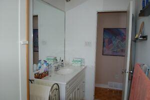 Tres grand miroir de salle de bain