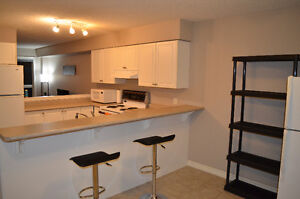Luxury ALL INCLUSIVE Student Rental- Starting May 2017- 5 bdrms London Ontario image 4