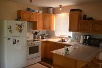 AVAILABLE OCT 1  -2bed 1 bath ground level ,open concept