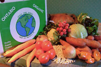 London - Eat Local, Organic Veggies All Summer - CSA
