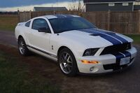2008 FORD MUSTANG GT500 SHELBY COBRA