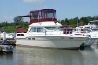 SEA RAY-38 FOOT-CRUISER-GREAT CONDITION