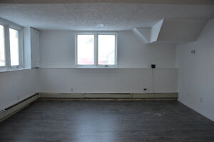 Newly Renovated Two Bedroom Apartment Available February 1