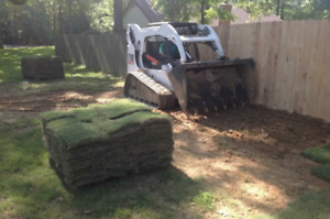 300 Sq feet of sod for sale