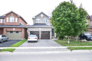 Fully Renovated Rental Unit in NewMarket