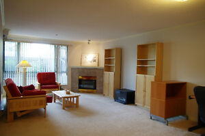 Newly renovated 3 bed 2 bath minutes away from Granville Island!