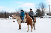 Randonnée cheval, activités équestres