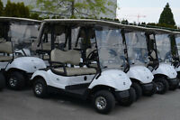 Electric Golf Carts -2009