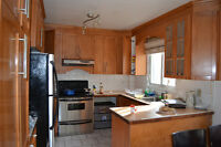 Large lower duplex with basement in cote st luc