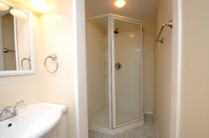 Large basesment suite