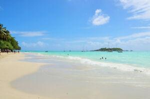 Maison face à la plage aux Antilles : Guadeloupe