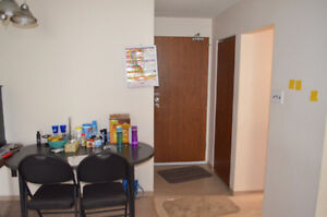 1 BR Sublet - Winnipeg Downtown - Holiday Towers-June 01, 2017