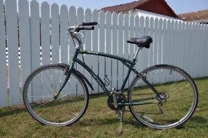 Bike - Adult