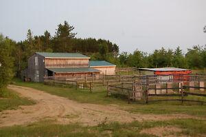 Fermette,43 arpents, ecurie ,lac privée, maison, garage