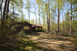 RUSTIC Cabin For Sale in Gull Lake $159,000