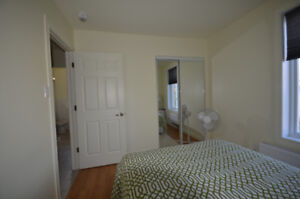 New & Beautiful fully equipped furnished apartment in downtown