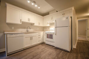 Beautiful 1 bedroom suite, central location
