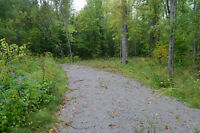 4.46 ACRES BUILDING LOT - IN SEVERN TOWNSHIP