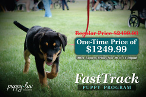 NEW FastTrack Play & Train - 50% OFF UNTIL FRIDAY!