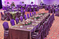 Rent for Only $1!!! Universal Chair Covers - Multiple Colors