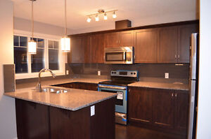 3 BDRM EXECUTIVE NEW TOWNHOUSE FOR RENT IN GREAT LOCATION!!