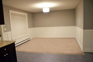 Spacious 2 Bedroom Legal Basement Suite - Willoughby Heights