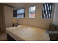 1 bedroom flat in London Road, Leicester, LE2 (1 bed)