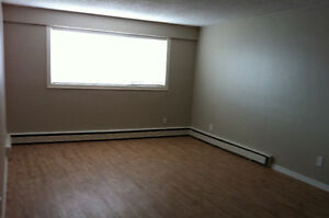Avalon one bedroom suite in 12 unit building 2621 Broadway Ave