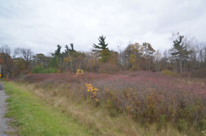 6+ ACRE BUILDING LOT
