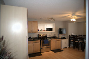 900 / 1br - FURNISHED Walk-out Basement Suite for Rent