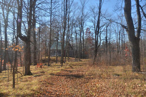 17 ACRE BUILDING LOT WITH LOG CABIN, DRILLED WELL AND 2 PONDS Kingston Kingston Area image 1