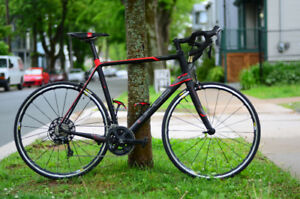 Opus Vivace 1.0 - Full Carbon XXL (11 speed)