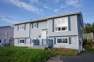 Renovated 2 Bedroom Basement Apartment Available Immediately