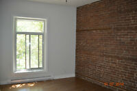 Amazing 4 bedrooms APT available for July 1st in (Saint Henri)