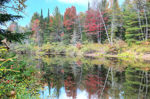 SLIGHTLY ELEVATED RIVERFRONT LOT ON THE YORK RIVER - BANCROFT ON