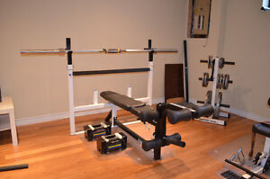 Northern Lights gym maison (bench press + olympic weight set)