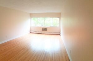 Comfortable Spacious 1 bedroom Available Now
