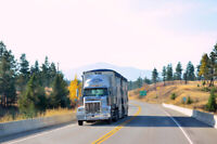 Professional Class 1 Company Drivers - Chip Hauling (GT)