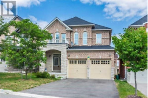 Stylish Richmond Hill  Home on Magdalan Cres @$3,150.00/Month