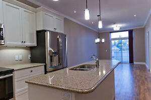 Upscale 1+ Bedroom apartment available in St Jacobs