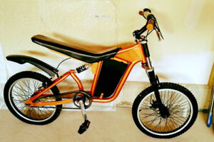 Custom motocross bike!