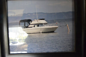 26 ft fly bridge cruiser, safe reliable, economical and all new.