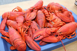 Fundy Fish Guys - Selling Lobster, Scallops, Halibut and more