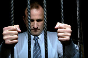 Do You Really Want To Go To Jail ? Or Be Fined ? Or Both ? Kitchener / Waterloo Kitchener Area image 1