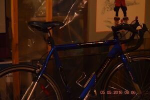 bLUE mEDALIST aLUMINUM 6061 Road Bike