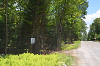 ALMOST 10 ACRES OF WOODED PROPERTY ON RAVENSCLIFFE