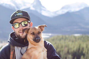 Dog Walking Service Canmore