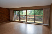 Two Level Town Home Overlooking Bowen Park